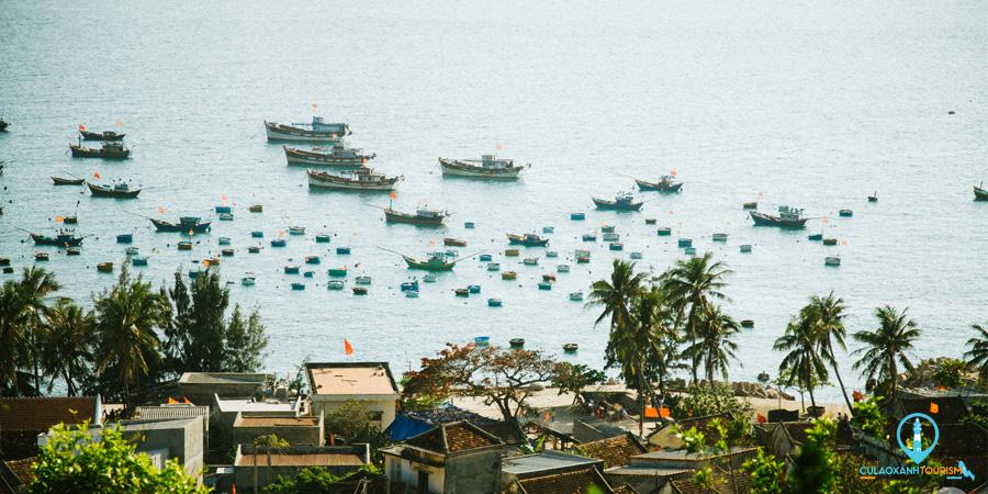 Tour Cù Lao Xanh Trong ngày Cù Lao Xanh Tourism